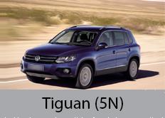 Tiguan (5N)